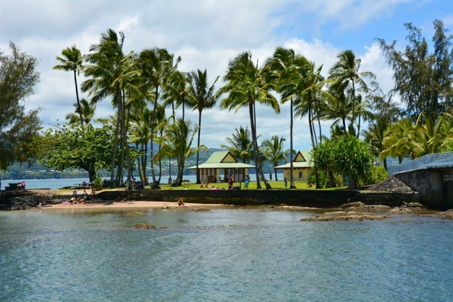 Hilo Hot Steam Volcano Tour Hawaii Outdoor Guides